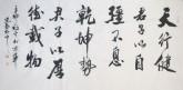 王守义(中国书协会员)四尺横幅 行书法《天行健》