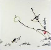 (已售)石泉 国画花鸟画小品 小尺寸21 荷花雀鸟鱼