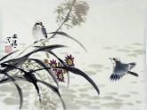 胡开喜 国画写意花鸟画  小尺寸 小鸟