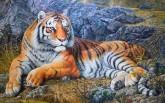 (已售)朝鲜油画 朴金成(一级画家)128*191cm 布面油画老虎 王者风范14