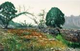 (已售)张立志 布面油画 创作作品60*80cm 树 风景画 村庄