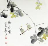 石泉 国画写意花鸟画 三尺斗方小果实《满秋风》4-6