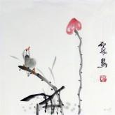 石泉 国画花鸟画小品 小尺寸斗方4-27荷花