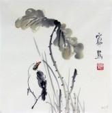 石泉 国画花鸟画小品 小尺寸斗方4-38荷花