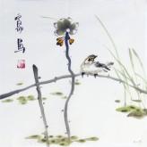 石泉 国画花鸟画小品 小尺寸斗方4-30