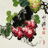 黄艺 国画葡萄 花鸟画 小尺寸《秋之硕》