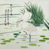 (已售)凌雪 三尺斗方 国画写意花鸟画《路路皆通》白鹭 9-15