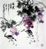 石云轩 国画写意花鸟画 三尺斗方《硕果图》葡萄小鸡1-8