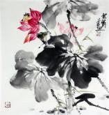 石云轩 国画写意花鸟画 三尺斗方《荷花》12-31
