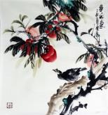 石云轩 国画写意花鸟画 三尺斗方《事事如意》柿子12-4