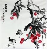 石云轩 国画写意花鸟画 三尺斗方《吉利图》荔枝小鸡12-15