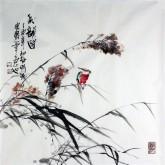 石云轩 国画写意花鸟画 四尺斗方《秋韵图》12-5