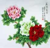 凌雪 四尺斗方 国画工笔画《花开富贵》牡丹9-15