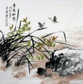 石云轩 国画写意花鸟画 四尺斗方《香色如意》兰花蝴蝶12-2