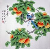 凌雪 四尺斗方 国画工笔画《事事如意》柿子1-12