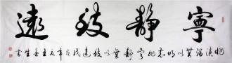 王春生 国画书法 行书 六尺对开横幅《宁静致远》