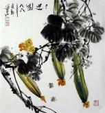 石云轩 国画写意花鸟画 三尺斗方《三思图》丝瓜14-11