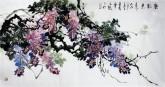 石云轩 国画花鸟画 四尺横幅《紫气东来》紫藤14-14