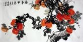 石云轩 国画花鸟画 三尺横幅《万事如意》柿子201-3