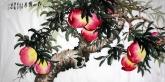 石云轩 国画花鸟画 四尺横幅《南山仙寿》寿桃201-5
